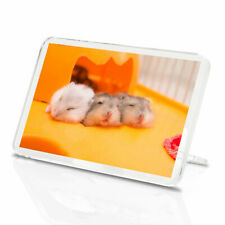 1 x Cute Trio of Gerbils Rodent Animals Classic Fridge Magnet - Kitchen #12957