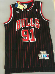Men's Dennis Rodman Chicago Bulls Throwback Swingman Striped Jersey Size S-XXL