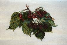 "Needle Point Canvas-Handpainted--""Cherries"""