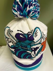 NBA Charlotte Hornets Cuffed Knit Pom Team Color One Size