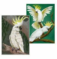 © ART - Ltd.Ed. bird australian white cockatoo parrots ACEO Art cards by Di