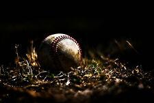 Incorniciato stampa-BASEBALL BALL deposizione nell' erba (Sports PICTURE POSTER ART)