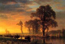 "Art Oil painting Western Kansas Travelers buffalos cross the river in sunset 36"""