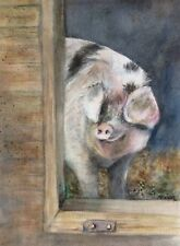 Original animal watercolour painting 'Porky pig' by Vivian Sophie