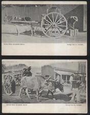POSTCARD MATAMOROS MEXICO MULE/HORSE & OXEN DRAWN CARTS 1907