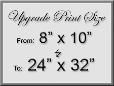 """Upgrade 8""""x10"""" purchase to a 24""""x32"""" Large Signed Print"""