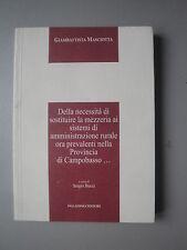 Della necessità di sostituire la mezzaria Masciotta Millennium 3 Palladino 2009