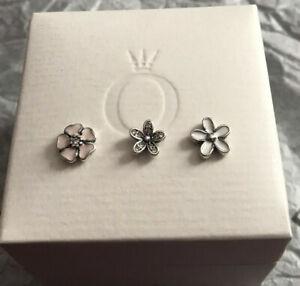 Genuine Pandora Sterling Silver Poetic Blooms Petite Floating Locket Charms Set