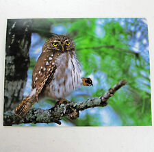 Leanin Tree Father's Day Greeting Card Funny Love Multi Color Fathers FD3