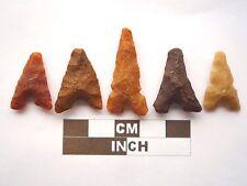 5 x puntas de flecha neolítica, Eiffel/puntos de Marruecos, Genuino - 4000BC (Z033)