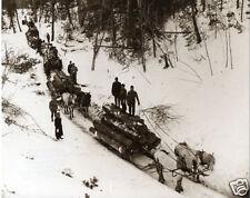 Vintage Logging In Winter Ten Sleighs and Horses Lumber Camp Boss Michigan GREAT