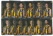 2015 Teamcoach HAWTHORN Silver Team Set