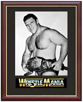 Bruno Sammartino Wrestling Legend Mounted & Framed & Glazed Memorabilia Gift