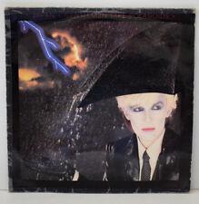 JAPAN GENTLEMEN TAKE POLAROID Disque Vinyl 33 Tours Virgin 202968 France 1980