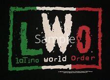 "LWO LOGO NWO WWE WCW ROH WRESTLING 2""x3"" Flexible Fridge Magnet"