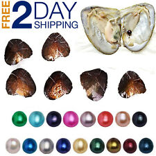 10 Individually Akoya Oysters With Large Pearls Inside Bulk 7-8 mm Birthday Gift