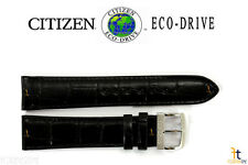 Citizen BM8240-03E Eco-Drive 20mm Black Leather Watch Band StrapBM8240-11A