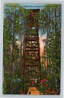 Waycross GA, Okefenokee Swamp Park, Observation Tower, Georgia Linen Postcard