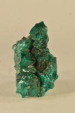 Amas de Dioptase du Congo 44x24mm specimen minéral collection cristallisation