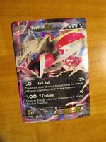 NM Pokemon YVELTAL EX Card BLACK STAR PROMO Set XY150 Ultra Rare Kalos Tin