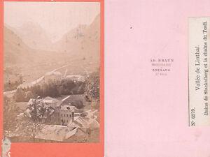 Adolphe Braun: Vallée de Linthal, frühe Aufnahme um 1865