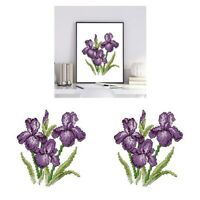 2x Flower - Stamped Cross Stitch Kit Embroidery Package for Beginners Gifts
