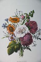 "Hand Colored Botanic Flower P. Oudart  ""Mars-Avril"" Print by  Lith de Engelmann"
