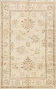 Traditional Peshawar Floral Hand-knotted Oriental Area Rug Classic 6'x9' Carpet