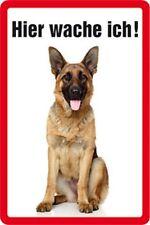 Hier wache ich Deutscher Schäferhund Warnschild Blechschild 20x30 cm PC 300/303