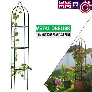 Outdoor/Garden Winding Plant Green Metal Obelisk Support Frame Trellis