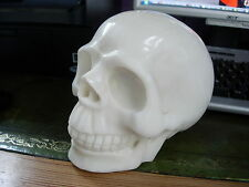 Crystal Skull white jade   huge