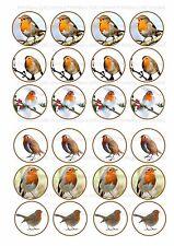 24 icing fairy cake toppers decorations Xmas Christmas Bird Robin gardener