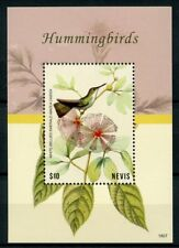 Nevis 2018 MNH Hummingbirds White-Bellied Emerald 1v S/S Birds Stamps