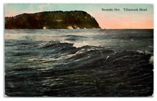 Early 1900s Tillamook Head, Seaside, OR Postcard