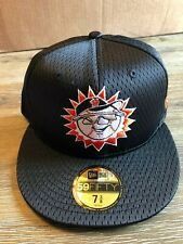 Hagerstown Suns 59fifty Batting Practice Mesh Hat Men's Size 7 3/8 MILB