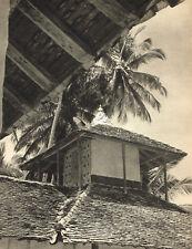 1940s Vintage Lionel Wendt Sri Lanka House Roof Palm Tree Photo Gravure Print