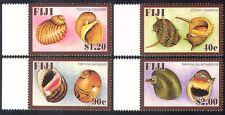 Fiji 2007 Conchiglie/lumache d'acqua dolce/NATURA/animali selvatici 4 V Set (n17964)