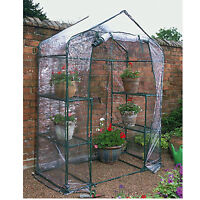NEW GREENHOUSE COMPACT WALK IN FRAME SHELVES CLEAR PVC COVER OUTDOOR GARDEN
