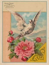 1890s Beautiful Schultz's Star Soap Large Victorian Trade Card, Dove, Soap