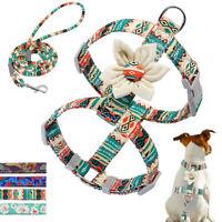 Flor Arnés y correa para perros de Nylon varios colores arneses perro Ajustable