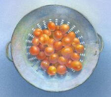 TOMATOES original handworked & signed, Limited edition art print