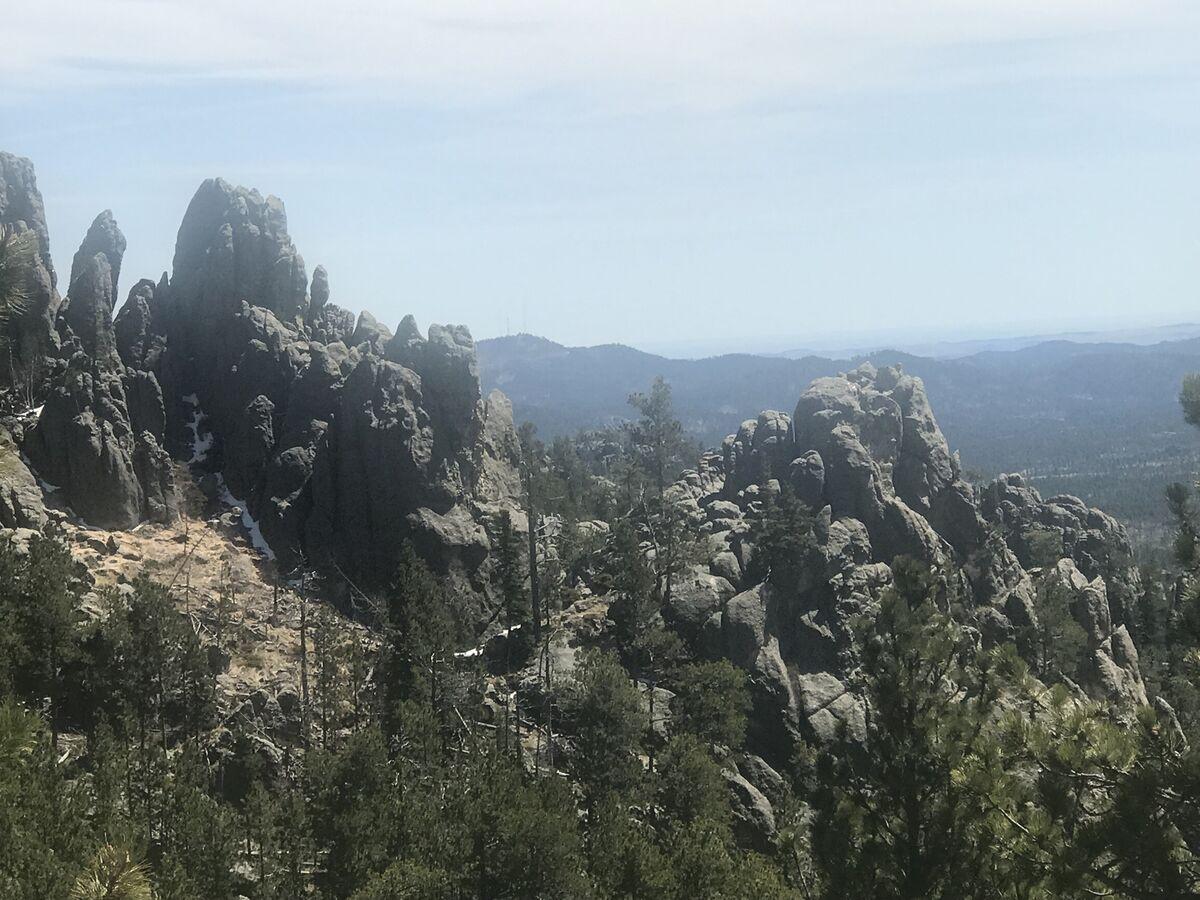 Black Hills Booty