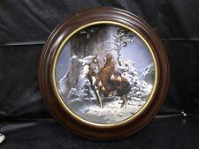 Hamilton Mint Mystic Warrior Plate - Framed
