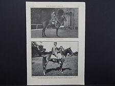 The Breeder's Gazette Nov 28 1906 Photographic Print #10 Horse, British Remount