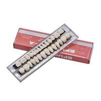 28pcs Acrylic Resin Full Set Teeth Denture Dental Tooth Upper Lower Shade 22# A2