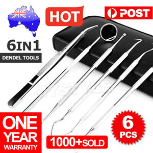 6pcs Stainless Dental Tools Set Kit Dentist Teeth Clean Hygiene Mirror Oral Care