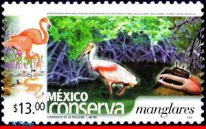 2432 MEXICO 2005 CONSERVATION, MANGROVE SWAMPS, BIRDS, (13.00P), MNH