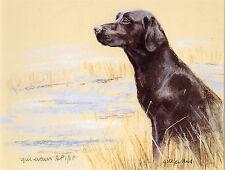 LABRADOR RETRIEVER BLACK DOG LIMITED EDITION PRINT - Artists Proof # 34/85