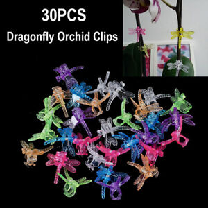 30Pcs Dragonfly Orchid Clips Orchid Grower Support Garden Plant Vine ClipsON I1
