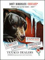 1939 Hibernating Black Bear Texaco Dealers Gas Oil vintage art print ad adL91